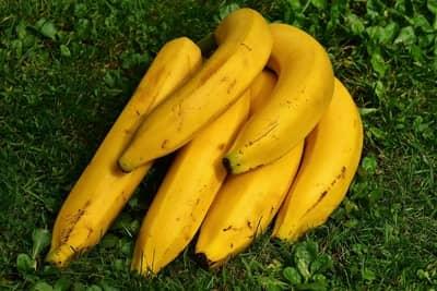Banana na geladeira