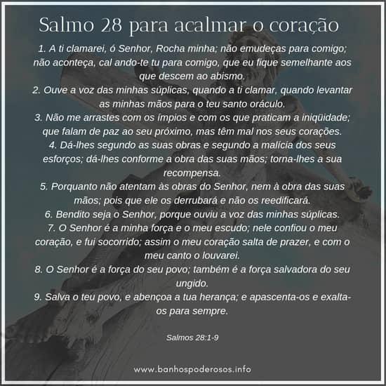 Salmo 28