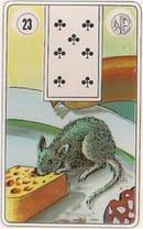 O Rato