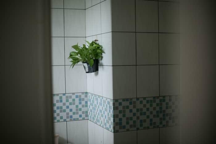 Evitar efeitos secundários dos banhos
