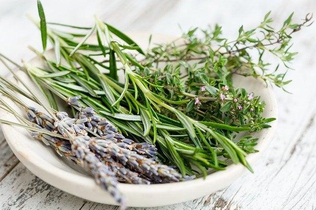 melhores ervas de Preto Velho para banho